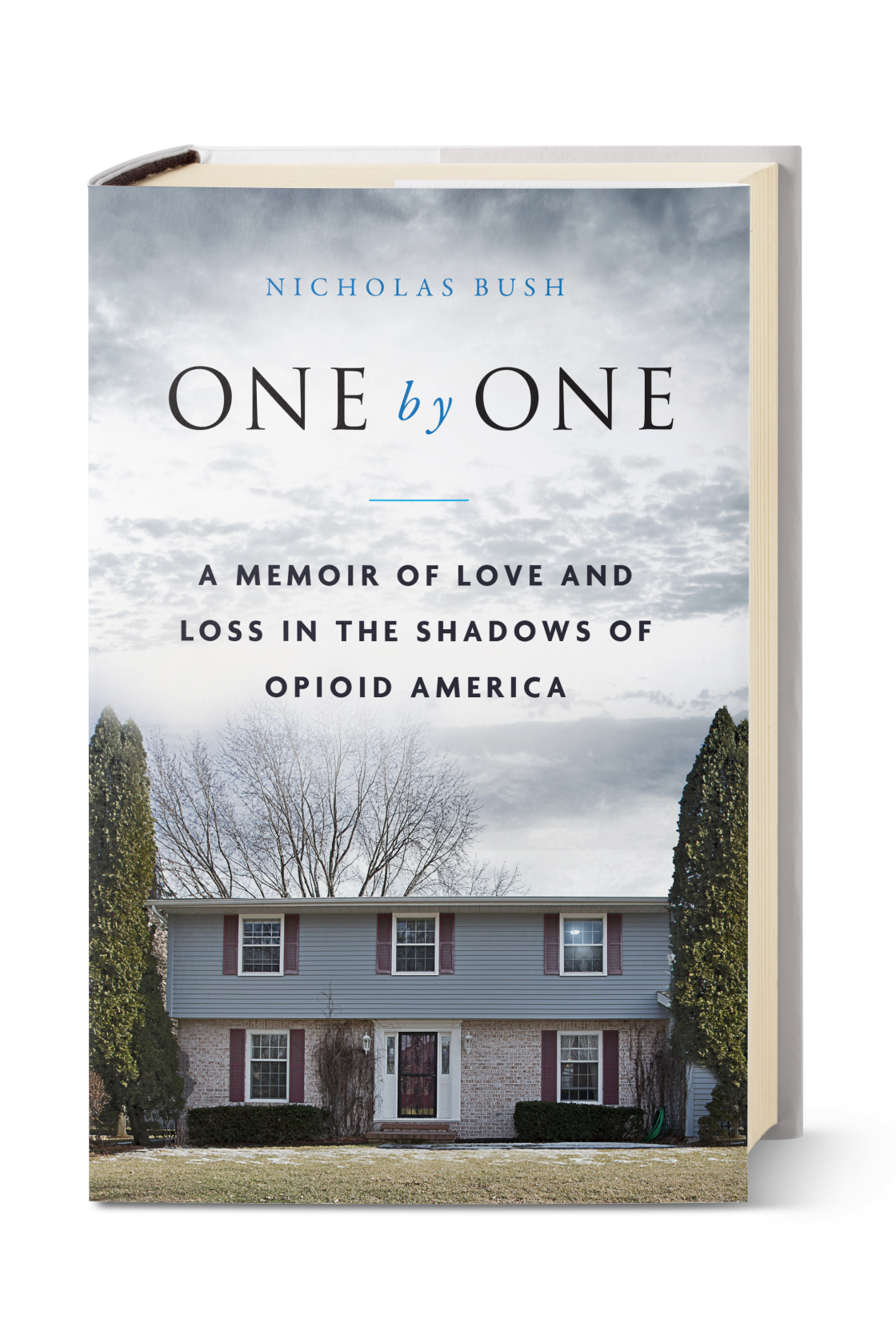 One by One: A Memoir of Love and Loss in the Shadows of Opioid America by Nicholas Bush